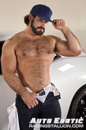 Muscular Bear - There's nothing sexier that fur on muscle, IMHO. This collection largely  duplicates others out there.but they're MY faves!