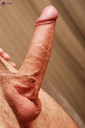 big dicks jack off - BadPuppy-Cliff-Butler-European-Hunk-With-a-Big-
