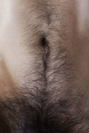 Belly Hair Gay Porn - Hairy Belly