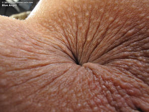 bbw asshole close up - Latina chics black dicks Best softcore for ipod. Ass Close Up Porn ...