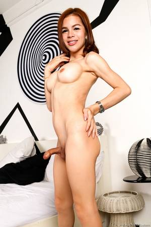 asian shemale solo - Beautiful solo shemale hd xxx - Beautiful shemale solo beautiful solo  shemale beautiful ladyboy solo seductive
