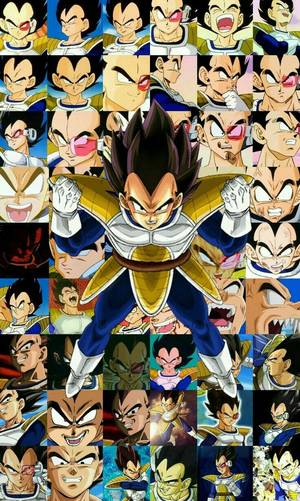 Dragon Ball Z King Yemma Porn - The awesomeness that is Vegeta - Dragon Ball Z - Visit now for 3D Dragon  Ball